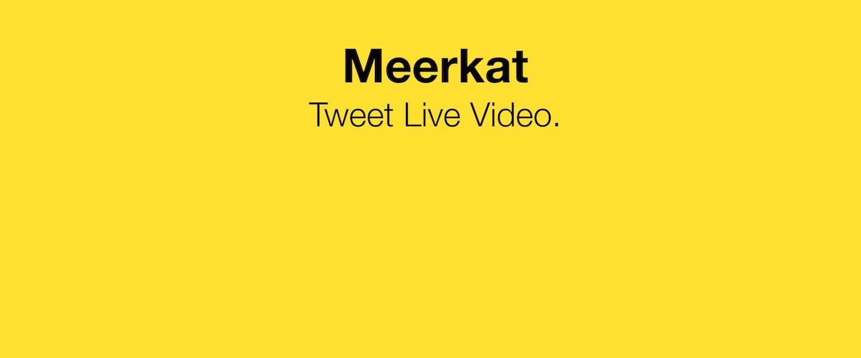 Meerkat: wat is het en waarom is het juist nú zo populair