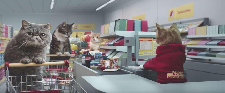 Stuur je kat eens naar de supermarkt!