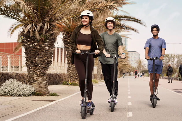 mi-electric-scooter-pro-de-3 (1)