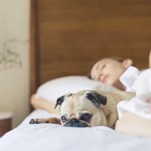 4 tips tegen slapeloosheid
