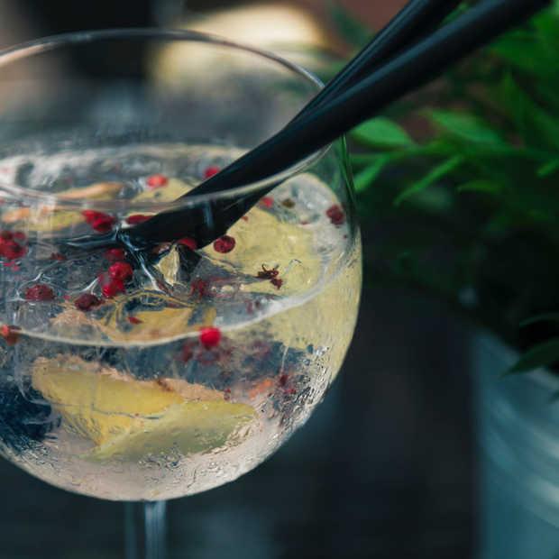 Gin inspiratie? Dit zijn de 4 lekkerste cocktails voor deze winter!