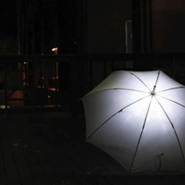Top 10 originele paraplu's