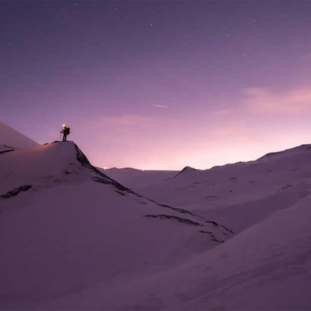 Van ijsberen tot pinguïns: ontdek deze ijskoude vakanties